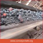 High Temperature Conveyor Belting manufact