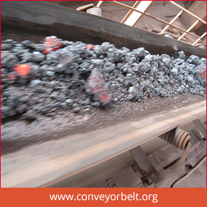 High Temperature Conveyor Belt Manufacturer