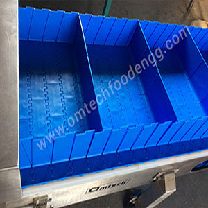 Plastic Modular Conveyor System manufact